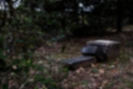 BarnettGraveyard.MM_.13-800x533.jpg