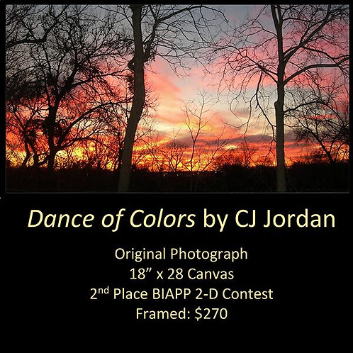 "MONARCH: ""Dance of Colors"" framed original photograph by CJ Jordan"