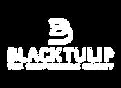 TULIP_comp_wht.png