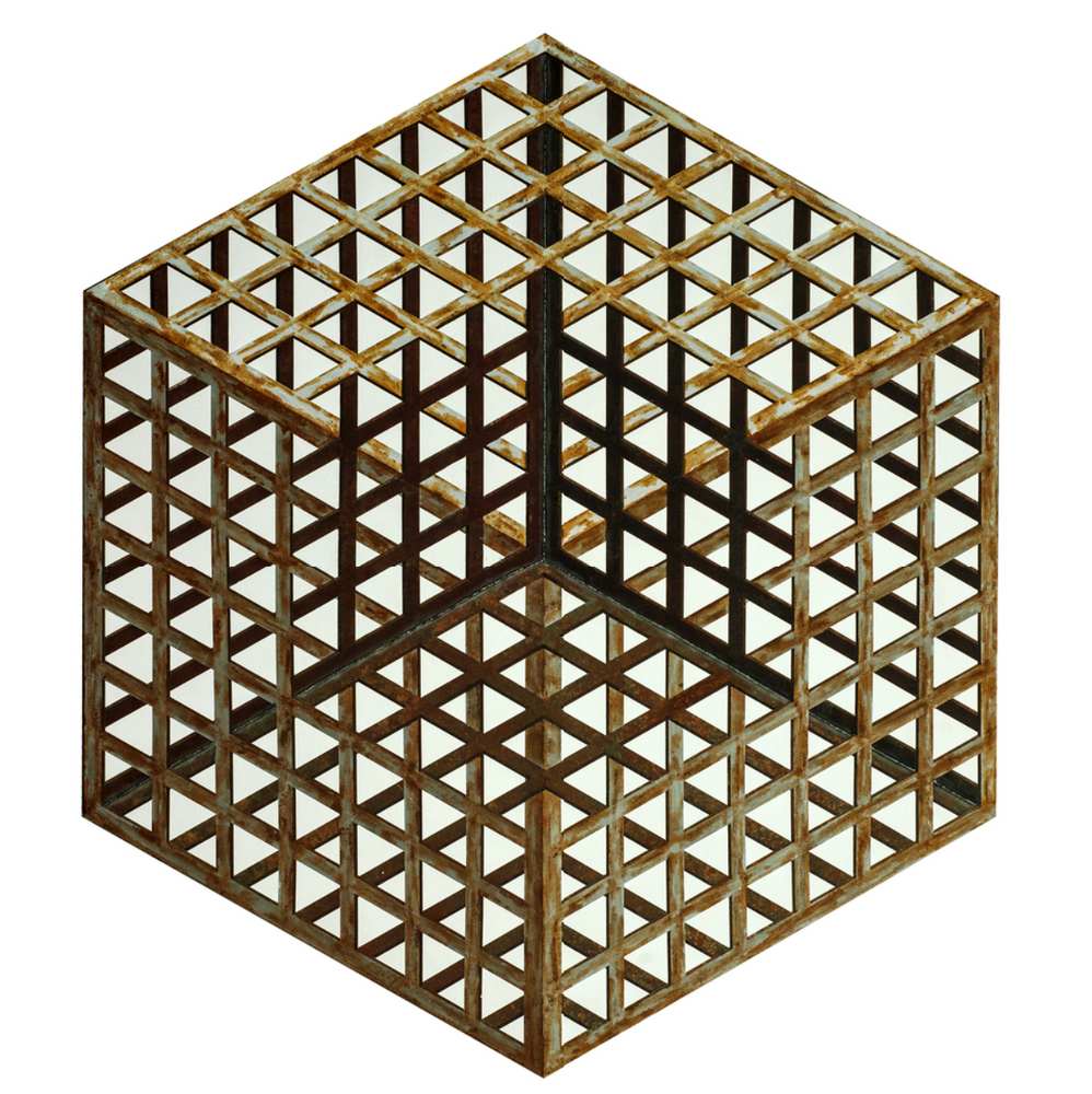 Iron Cage 3 铁笼 3