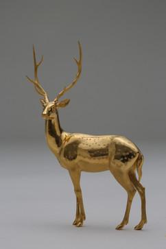 Sika Deer 鹿