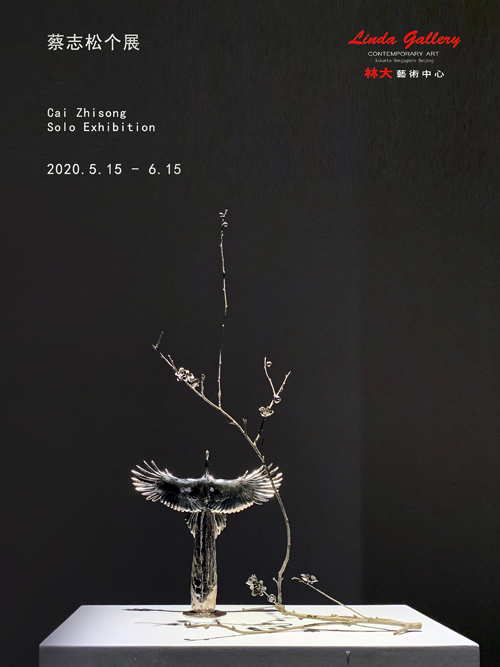 Cai Zhisong Solo Exhibition