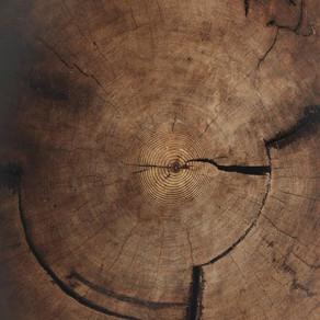 La verdad sobre el crujir de las maderas