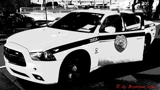 Officer Observing