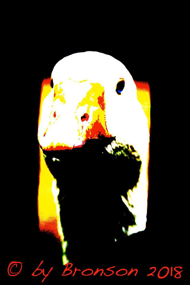 Curiouse Goose 'Sc2'
