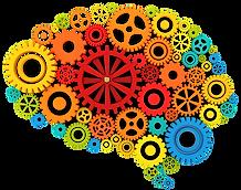 brain color.png