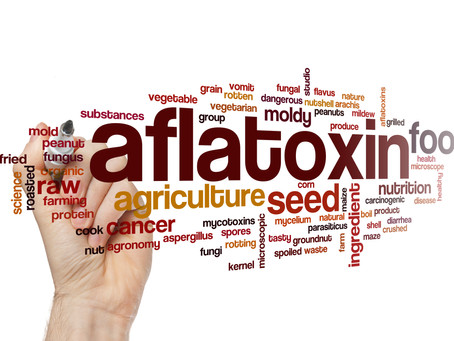 Aflatoxicosis: A Source of food poisoning in Dogs