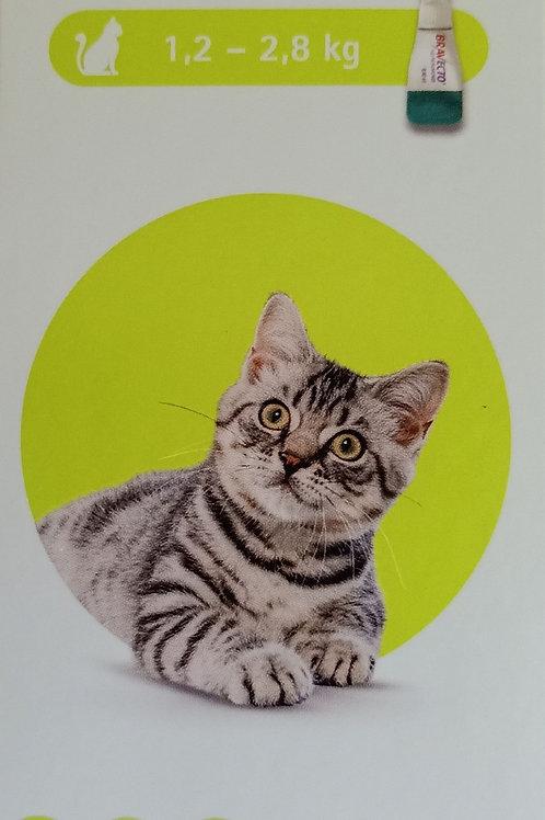 Bravecto للقطط ، 1.2 - 2.8 كجم