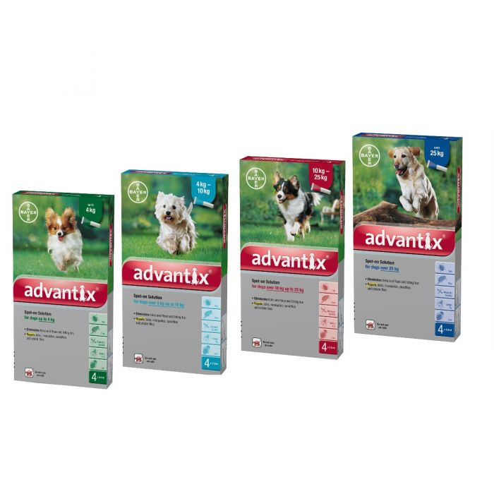 Advantix contains two main active ingredients called imidacloprid and permethrin that work in combination against fleas, ticks, mosquitoes, sandflies, lice and stable flies. The treatment is administered as a simple spot-on treatment. Advantix stays effective even when your dog gets wet.^ Advantix is not suitable for cats, and should only ever be used on dogs.