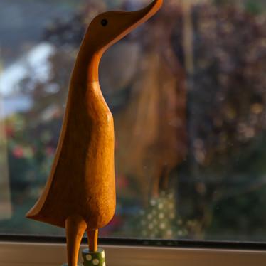 Duck a l'orange