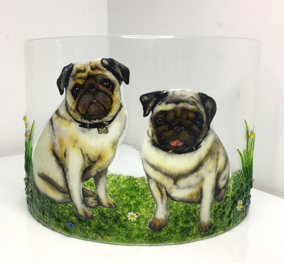 Pugs on curved glass