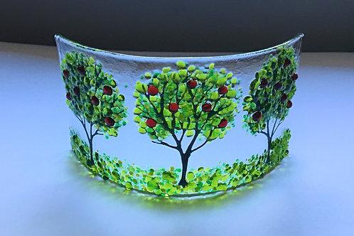 Apple Tree Curve