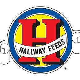 Hallaway feed.PNG