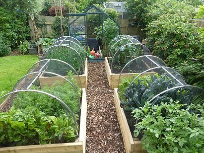 Vegetable garden design raised beds