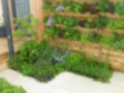RHS Malvern show garden Andy Bending edible living wall