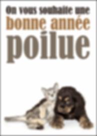 2955-Une-bonne-annee-poilue_maxi.png