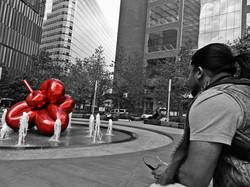 B(e) Selah v.s Jeff Koon
