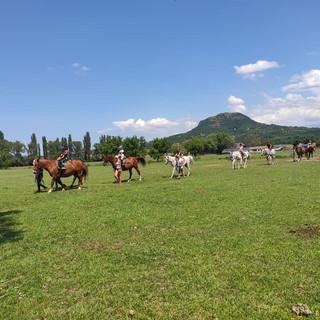 A Csobánc és a lovastanya