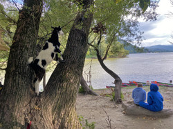 Pihenő a Dunakanyar-túrán