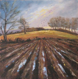Ploughed Field by Pearl Hailstone