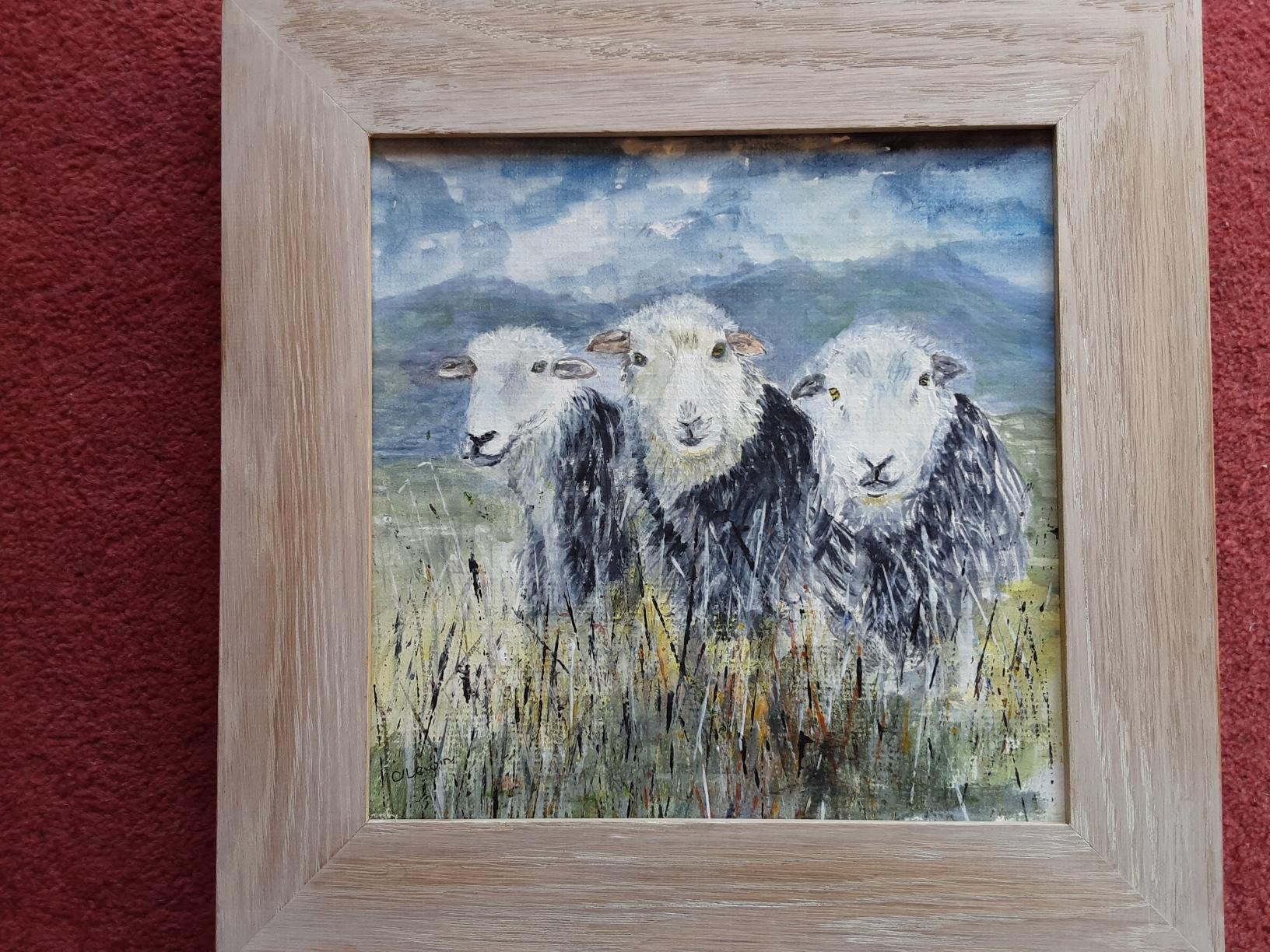 Caroline Lewin - Herdwick Sheep