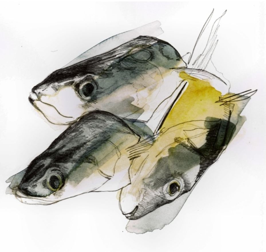 Small Fish Heads by Gwen Earl