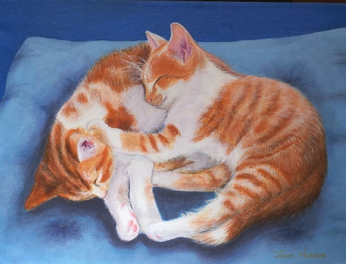2 Cats by Jean Nobbs