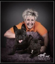 teresa-cargill-phoenix-french-bulldog-re