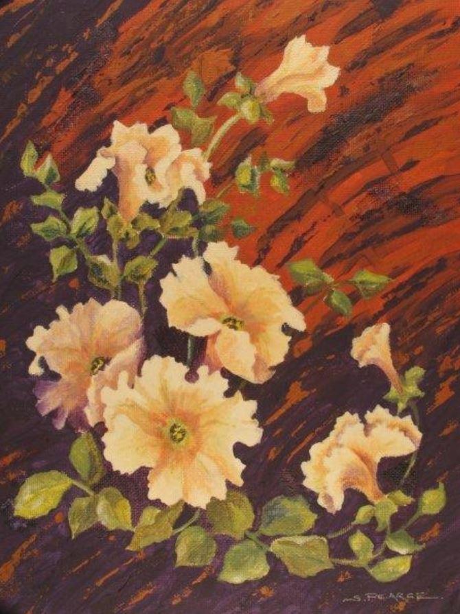 Petunias by Sandra Pearce