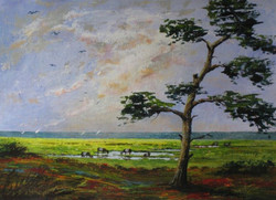 Scots Pine and Cows by Pearl Hailstone