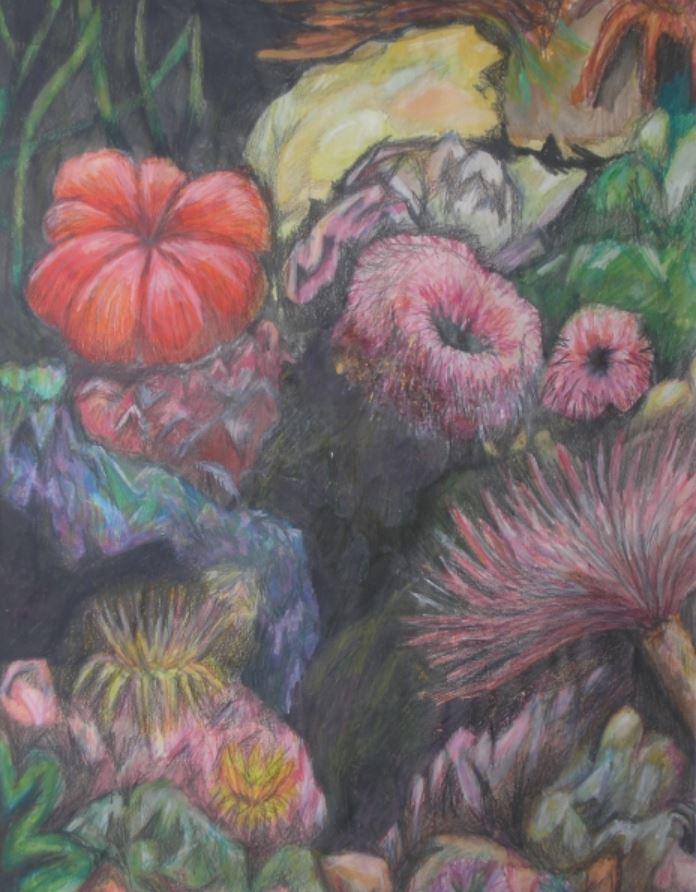 Coral Reef VIII by Val Tierney