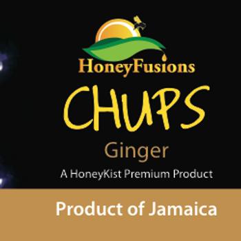 HoneyKist Ginger Flavoured Honey 1.25oz