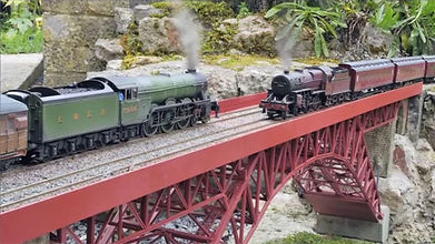 Trains bridge passing on the garden railway
