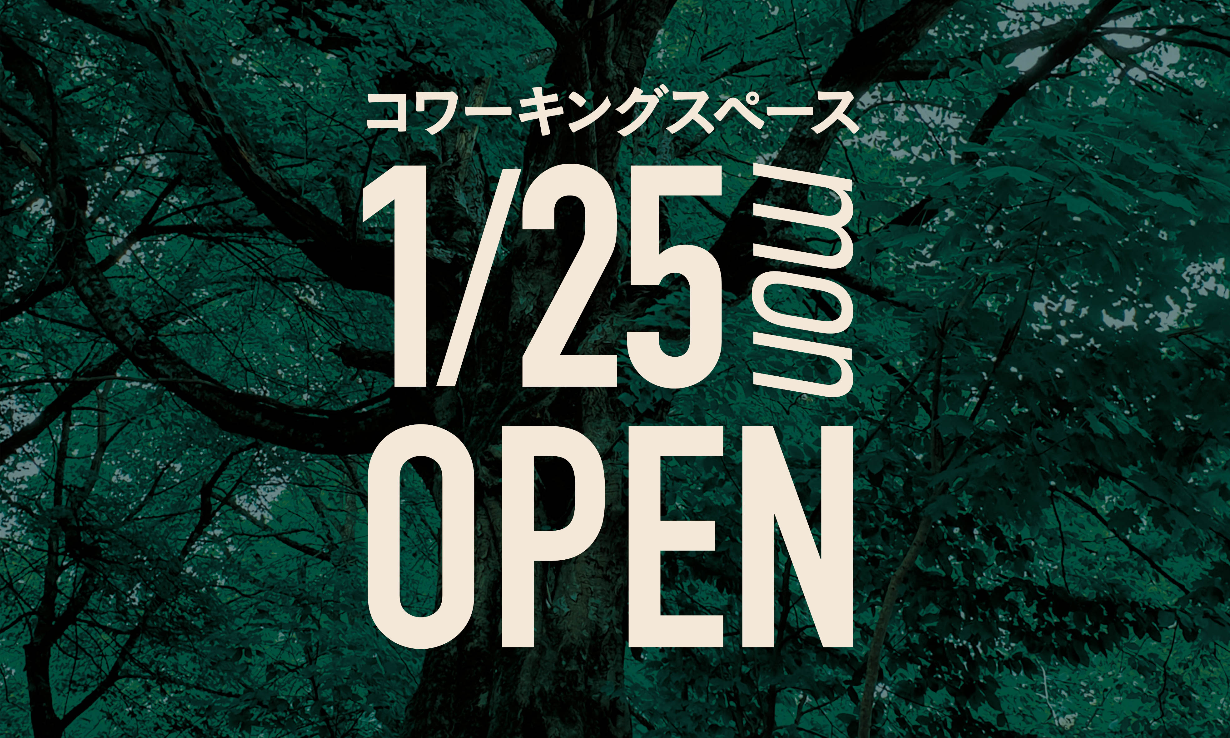 コワーキングスペース カムカム大通オープン!