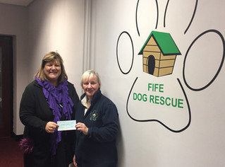 £500 Xmas Giveaway - Fife Dog Rescue & Rehoming