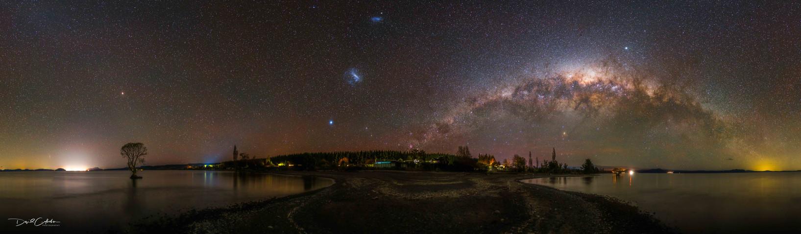 Taupo Tree Milky way Panorama
