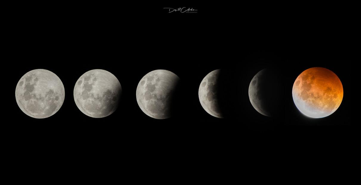 Blood moon Nz 2021