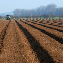 Ploughed furrows