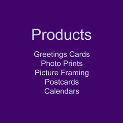 wix fp photography products square