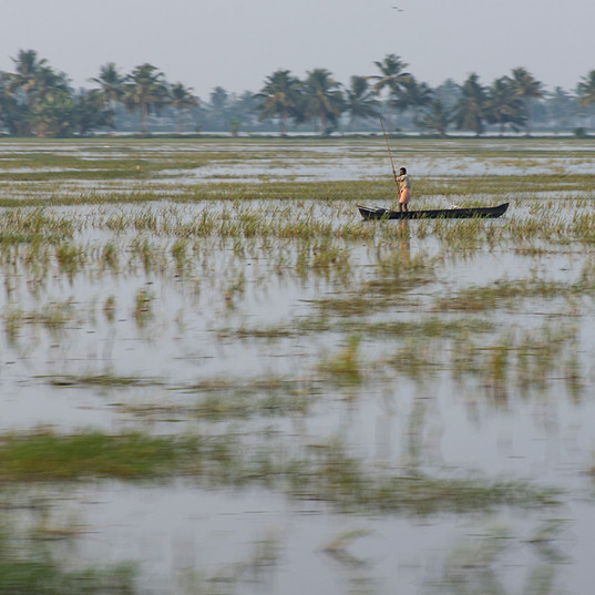 Kerala backwater fisherman
