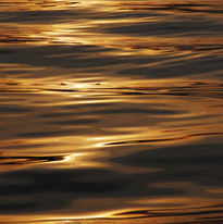 Golden sea water ripples at sunset