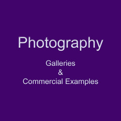 wix fp photography gallery square