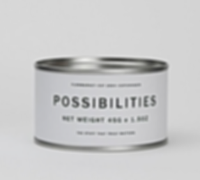 possibilities, conceptontwikkeling, strategie, advies