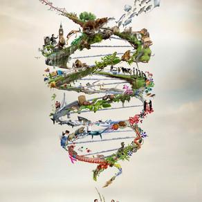 Graven in je genen of in je ziel?