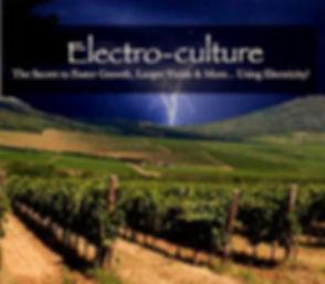 ElektrocultureNEU_edited_edited.jpg