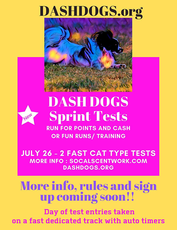Dash Dogs sprint tests.jpg