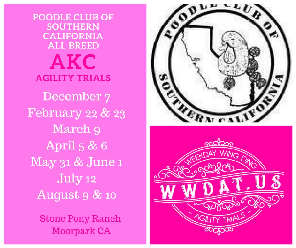PCSC All breed agility trials