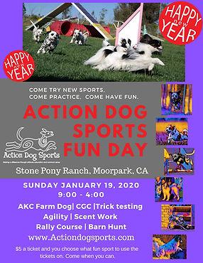 Dec Action Dog Sports Fun Day (1).jpg