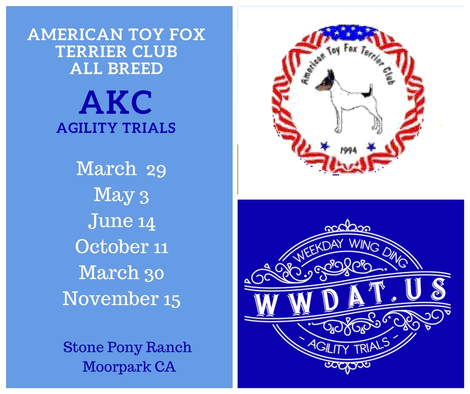 ATFTC all breed agility trials