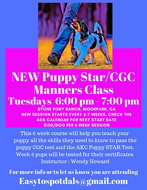 _Star Puppy class master.jpg